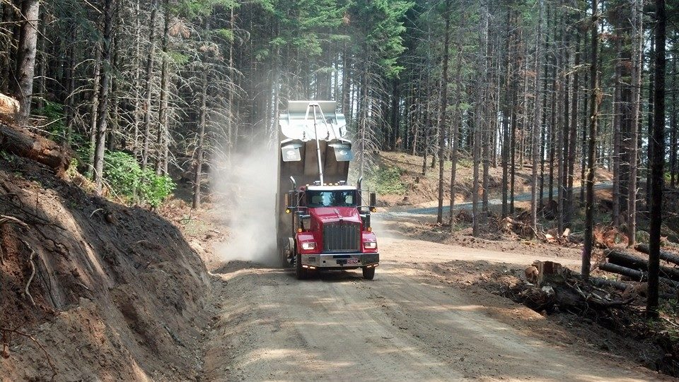 breaking through the forest and building the roads